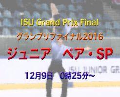 フィギュアスケート ペア